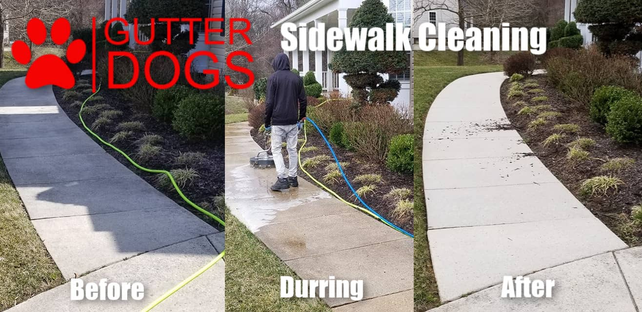 Concrete Cleaning Maryland - GUTTERDOGS